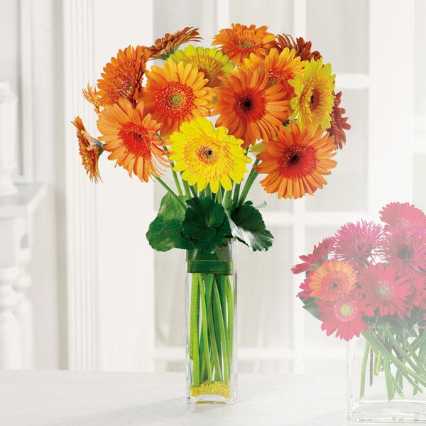 Le Bouquet - send flowers in Ramsgate - 01843 593 413